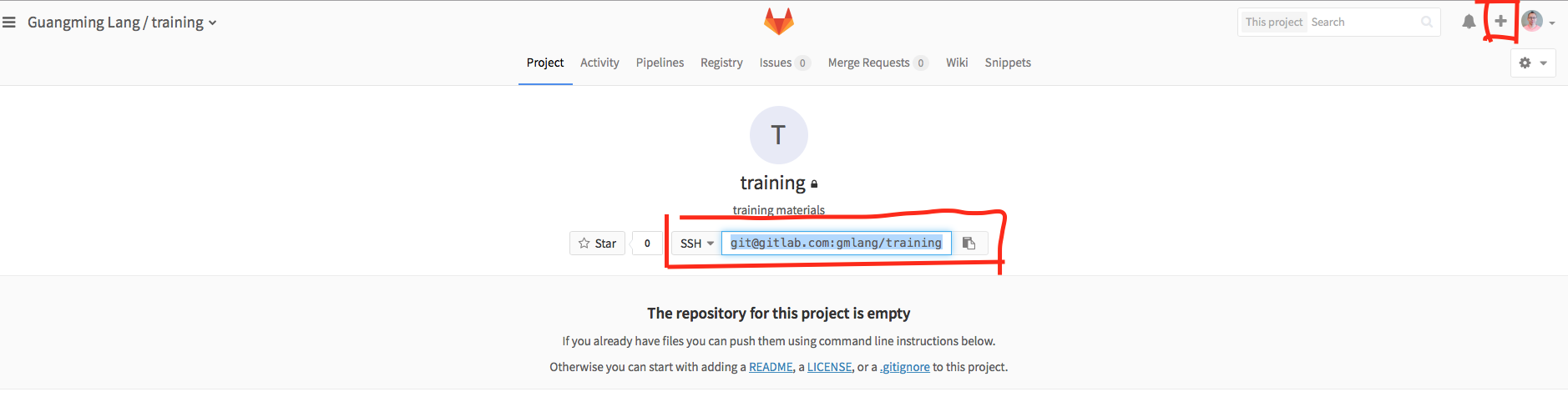 On Git, Github and Gitlab – Become Great at R